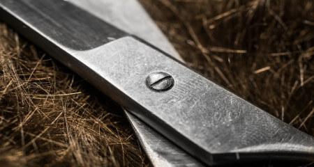 Wissen: Geräte & Werkzeug