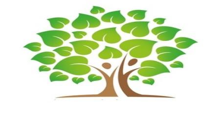 Wissen & Themen: Wellness Haarkosmetik